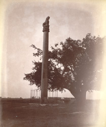 Front view of the Asokan Edict Pillar, Lauriya Nandangarh, Champaran District 100326a